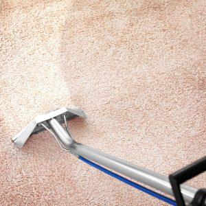 Химчистка шерстяных ковров